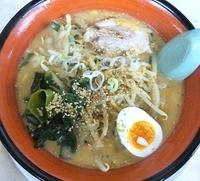 「こく味噌らー麺(800円)」@麺屋 がむしゃらの写真