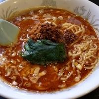 「担々麺 (激辛) 750円」@桃天花の写真