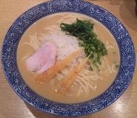 「【限定】 冷やし鶏白湯麺(大盛):700円」@麺屋 一燈の写真