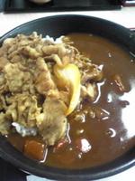 「牛丼・カレー(旨辛)¥480」@吉野家 浅草駅前店の写真