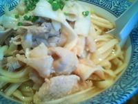 「冷や肉南蛮そば 「冷や大」 (ヒヤダイ)(¥700)」@麺屋 一燈の写真