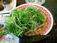 「超ねぎもりラーメン(塩)850円+メンマ」@じゃげな 辰野店の写真