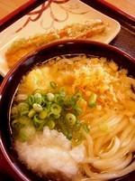 「かけうどん」@こだわり麺や 丸亀田村店の写真