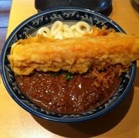 「激辛カレーぶっかけ(¥850)+ちく天(¥100)」@釜たけうどん 梅田店の写真