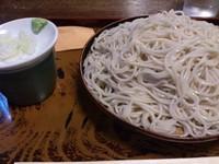 「大もり_650円(普通もり_500円)」@泰明庵の写真