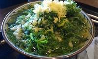 「かけうどん並(ネギ山盛り)=280円」@丸亀製麺 大和店の写真