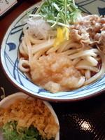「みぞれぶっかけ(大)580円」@丸亀製麺 天王洲アイル店の写真