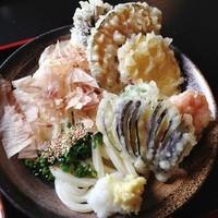 「野菜ぶっかけうどん(冷)680円」@麦の香りの写真