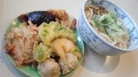 「天ぷら・惣菜一皿盛り放題うどん=390円」@そばうどん名無し(川崎市地方卸売市場南部市場内)の写真