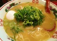 「並ラーメン(元味)¥500+温泉卵¥30」@特製ラーメン 大中 伏見店の写真