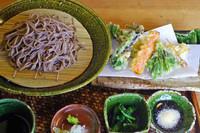「地山菜の天もりそば 1420円」@とき庵の写真