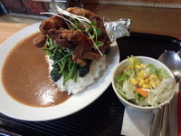 「北品川カレー(M)880円+鶏モモ300円」@ロビンソンクルーソーカレーハウスの写真