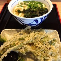 「かけ(並)(¥360)+春菊天(¥110)」@讃岐うどん 源八の写真