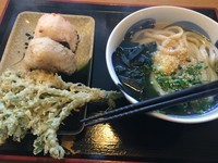 「かけうどん並【360円】」@讃岐うどん 源八の写真