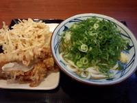 「かけ(大)380円他」@丸亀製麺 イオンレイクタウンmori店の写真