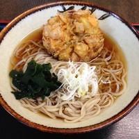 「天ぷら(¥410)」@あきばの写真