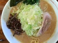 「どろ系濃厚味噌らーめん 760円(キャベツ+180円)」@麺屋 てっぺんの写真