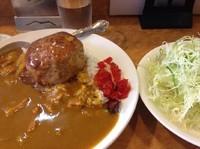 「ハンバーグカレー【830円】」@とん金の写真