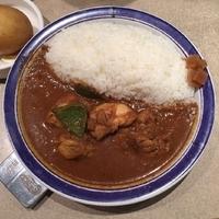 「チキンカレー(辛さ10倍)」@カリーライス専門店 エチオピア 本店の写真