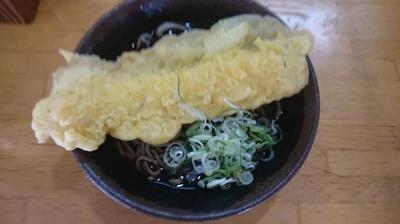 「いか天そば(430円)」@野むらの写真
