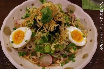 「サラダうどん」@Dining なかじまの写真