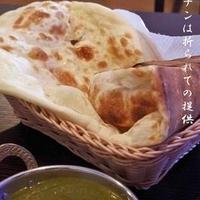 インド・アジアン料理 サンサルの写真