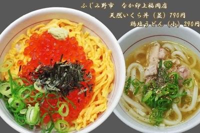 「天然いくら丼と小うどん鶏塩790円&290円」@なか卯 上福岡店の写真