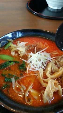 「濃厚担々麺(新メニュー)」@くりの木 加須店の写真