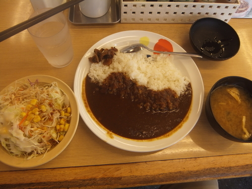 「オリジナルカレー330円&生野菜110円(クーポンで無料)」@松屋 北小金店の写真