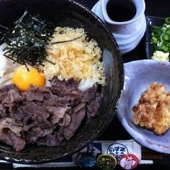 東成麺家 うどん上々の写真