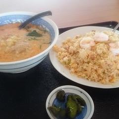 台湾料理 金龍の写真