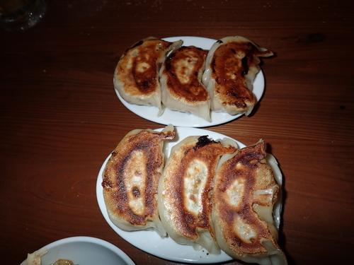 「練馬大ギョーザ」@麺 酒 やまのの写真