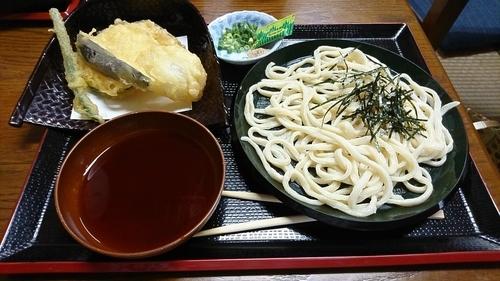 「地粉手打ちうどん 500円」@こいずみ食堂の写真