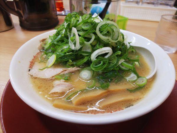 「ラーメン(小&無料券で餃子)」@ラーメン 横綱 港店の写真
