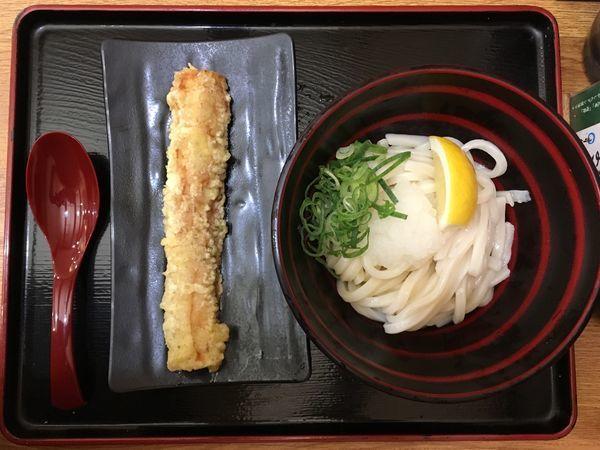 「おろし醤油(冷) +ちくわ天」@本場さぬきうどん 親父の製麺所 武蔵小杉店の写真