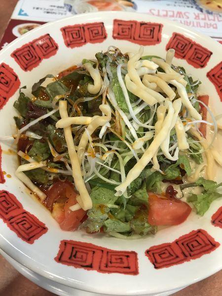 「たっぷり野菜の濃厚冷やし担担麺」@バーミヤン 神奈川大口店の写真