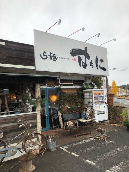「味噌火山ラーメン」@ら麺 はちにの写真