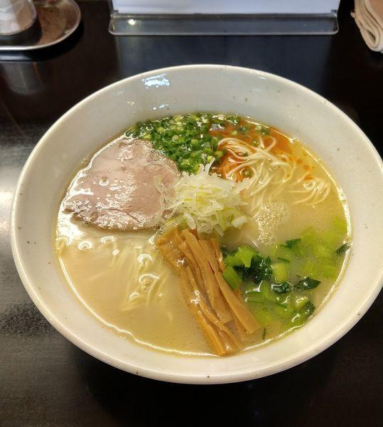 「鶏白湯 塩  (限定 ¥800)」@麺処 たまりやの写真