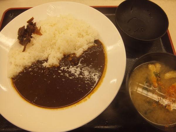 「オリジナルカレー380円(クーポンで350円)」@松屋 赤坂店の写真