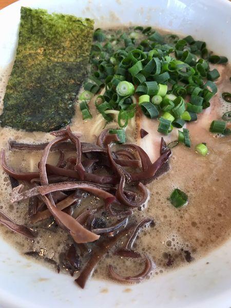 「とんこつラーメン720円」@麺屋 くおんの写真