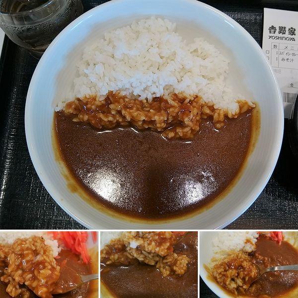 「スパイシーカレー 350円」@吉野家 入谷店の写真