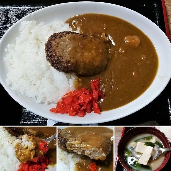 「ハンバーグカレー 850円」@辰巳庵の写真
