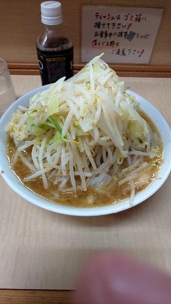 「小豚麺半分➕野菜➕油➕にんにく少な目」@ラーメン二郎 京成大久保店の写真