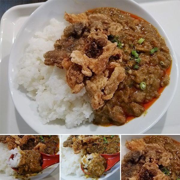 「チャンドゥカレー(大)+炸五花肉=900円」@チャンドゥ・ハウスの写真