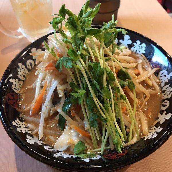 「野菜味噌らーめん」@味噌の大将 江古田店の写真