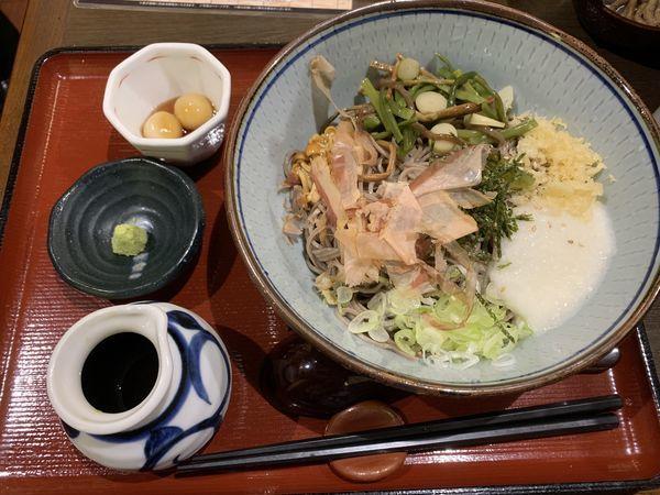 「冷やし山菜とろろそば 770円」@信州そば処 そじ坊 那覇空港店の写真