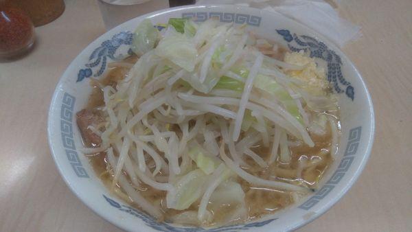 「ミニラーメン600円麺硬め」@ラーメン二郎 京成大久保店の写真