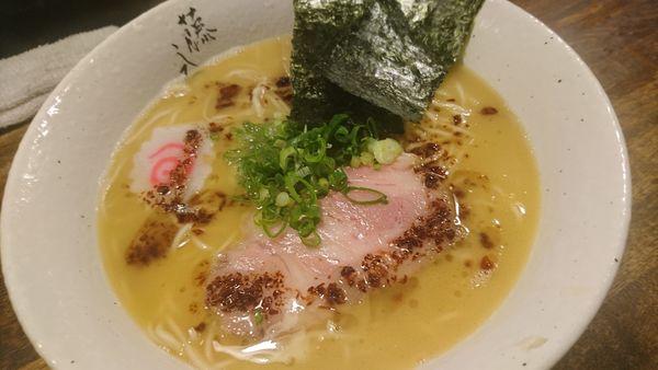 「鶏白湯ラーメン、大盛」@麺屋 藤しろ 目黒店の写真