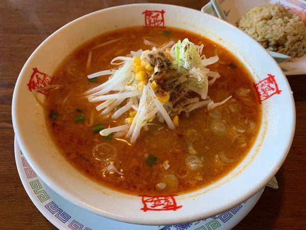 「辛味噌ラーメン」@おおぎやラーメン 鬼怒川店の写真